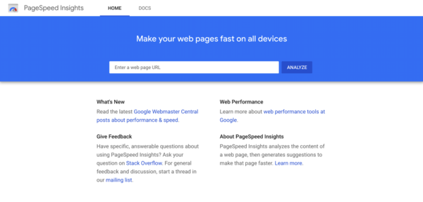 Google PageSpeed Insights: The Truth About Scoring 100/100
